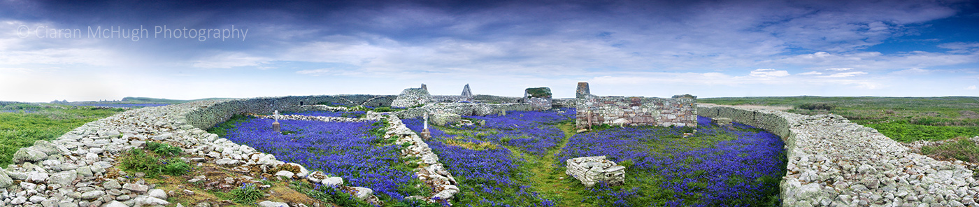 Ciaran McHugh Photography, Sligo: bluebells at inishmurray